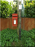 TM1265 : Norwich Road Postbox by Adrian Cable