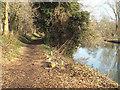SP2965 : Riverside Walk behind Mercia Way, Warwick by Robin Stott