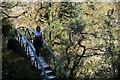 SN7477 : Devil's Bridge Falls by I Love Colour