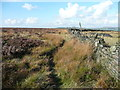 SE0711 : Old footpath seen from the reservoir boundary wall, Lingards by Humphrey Bolton