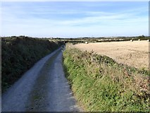 SW7112 : Lloyds Road from Bass Point to Cross Common by David Smith