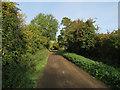 TL3669 : Middle Fen Drove by Hugh Venables