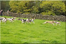 NY1808 : Trailhounds at Wasdale Head Show by Philip Halling