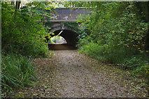 SJ6903 : Blists Hill Tunnel by Stephen McKay