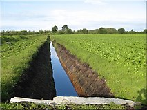 N4839 : Drainage ditch by Jonathan Wilkins