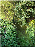 TM2363 : River off the A1120 The Street by Adrian Cable