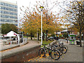 SK3587 : Cycles and autumn leaves, Sheffield by Stephen Craven