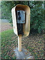 TF0554 : Ashby de la Launde: payphone in Church Avenue by Chris Downer