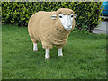 TL5025 : Model Sheep at Rose and Crown Public House, Bentfield Green, Essex by Christine Matthews