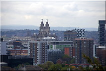 SJ3390 : Royal Liver Building from Everton Brow by Mike Pennington