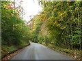 SP8502 : Glade Road by Robin Webster