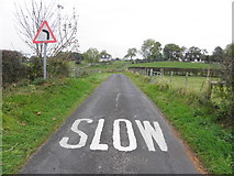 H5572 : Slow markings, Roeglen Road by Kenneth  Allen