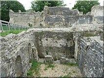 TQ4109 : St Pancras Priory, Lewes - Original latrine block by Rob Farrow