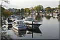 TQ0966 : Moored boats, Walton-on-Thames by Alan Hunt