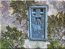TL4731 : Ordnance Survey Flush Bracket 1308 by Peter Wood
