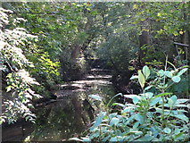 TQ3295 : Salmon's Brook east of the Clarendon Arch by Mike Quinn