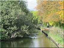 TQ3296 : The New River (old course) - southern end of the Enfield Loop (3) by Mike Quinn