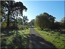 NS3977 : A path in the industrial estate by Lairich Rig