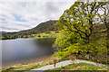 NY3506 : Rydal Water by Ian Capper