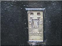 SS6613 : Ordnance Survey Flush Bracket S5172 by Peter Wood