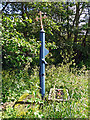 NY4754 : Village pump, Great Corby by Rose and Trev Clough