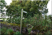 NY6529 : Footpath leading to Mill Lane by Ian S