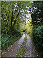 SK5490 : The cobbled lane that is the access to Roche Abbey by Humphrey Bolton