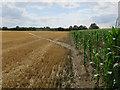 TL3267 : Footpath to Conington Road by Hugh Venables