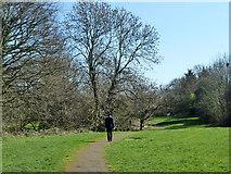 TQ2589 : Path, Brookside Walk by Robin Webster