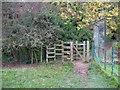 SK5489 : Sandra's kissing gate, Roche Abbey by Humphrey Bolton