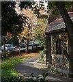 ST5775 : St Alban's Hall, Westbury Park by Derek Harper