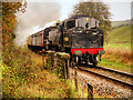 SD7919 : ELR Steam Train near Irwell Vale by David Dixon