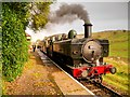 SD7920 : Ex-GWR Steam Locomotive at Irwell Vale Halt by David Dixon