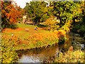 SJ8382 : Quarry Bank Mill Meadow in Autumn by David Dixon
