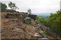 SK2575 : Getting onto Curbar Edge by Bill Boaden
