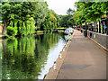 TG2308 : River Wensum at Norwich by David Dixon