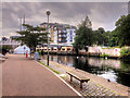 TG2307 : Riverside Path Approaching Novi Sad Friendship Bridge, Norwich by David Dixon