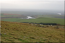 SN0631 : The slopes of Foel Eryr by Trevor Harris