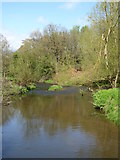 SJ8481 : The River Bollin in The Carrs park by Rod Allday