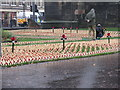NT2573 : Poppyscotland Field of Remembrance by M J Richardson