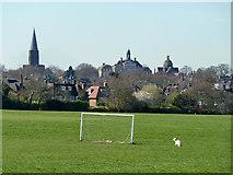 TQ2688 : Lyttleton Playing Fields by Robin Webster