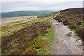 SK2676 : Footpath on White Edge by Bill Boaden