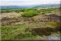 SK2676 : Scrubby moorland below White Edge by Bill Boaden