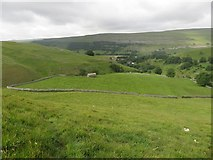 SD9772 : Grassland east of Kettlewell by Graham Robson