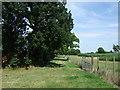 SP9635 : Farm track off Ridgmont Road by JThomas