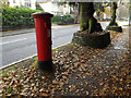 TM1645 : 77 Henley Road George V Postbox by Adrian Cable