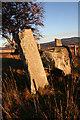 NJ5919 : Old Keig Recumbent Stone Circle (7) by Anne Burgess