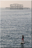 TQ3103 : Paddle Boarder, Brighton Pier, East Sussex by Christine Matthews