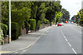 TG2411 : Wroxham Road Northbound by David Dixon