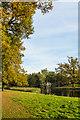 TQ0960 : Autumn colours, Painshill Park by Ian Capper